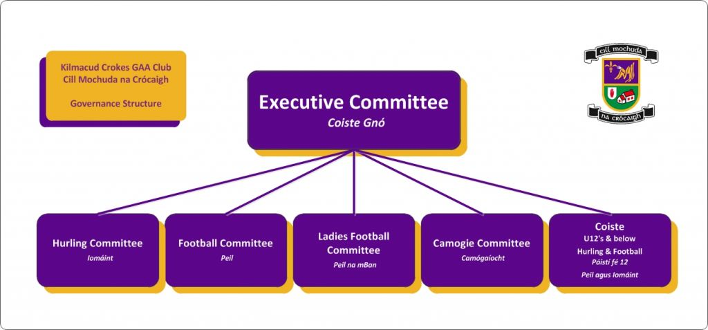 Kilmacud Crokes Governance Structure