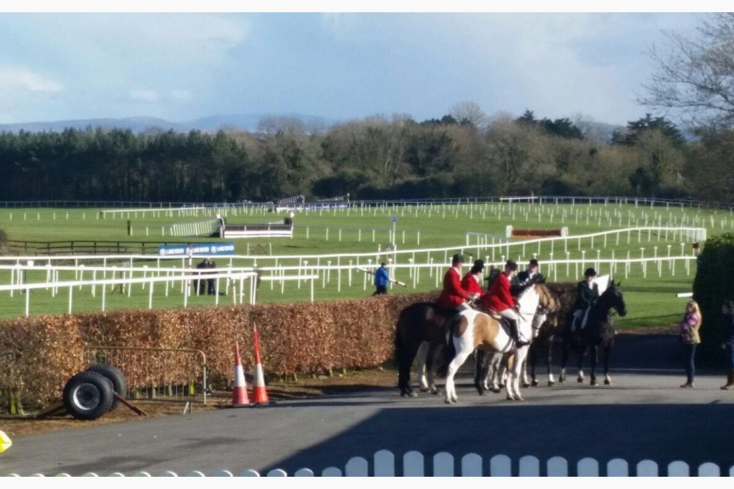 Punchestown 2016 -  Another Day at the Races