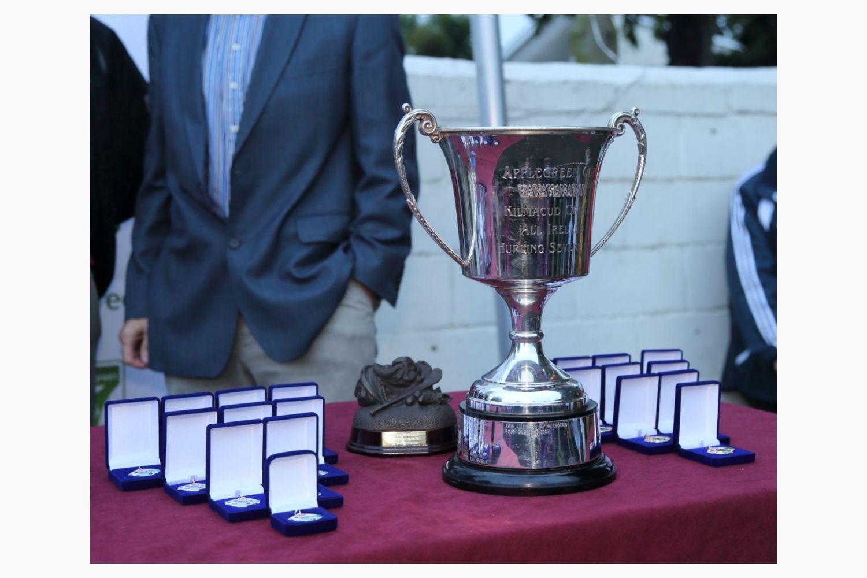 All Ireland Hurling 7s - Senior Final