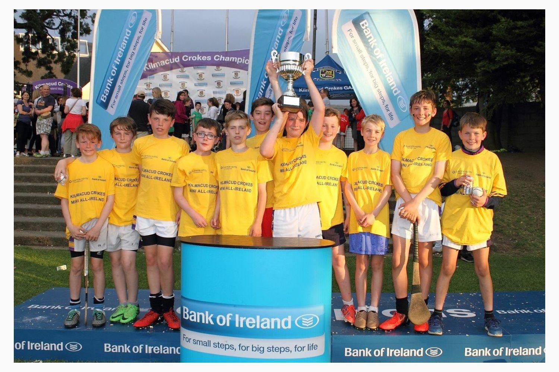 Hurling Mini All Ireland Finals