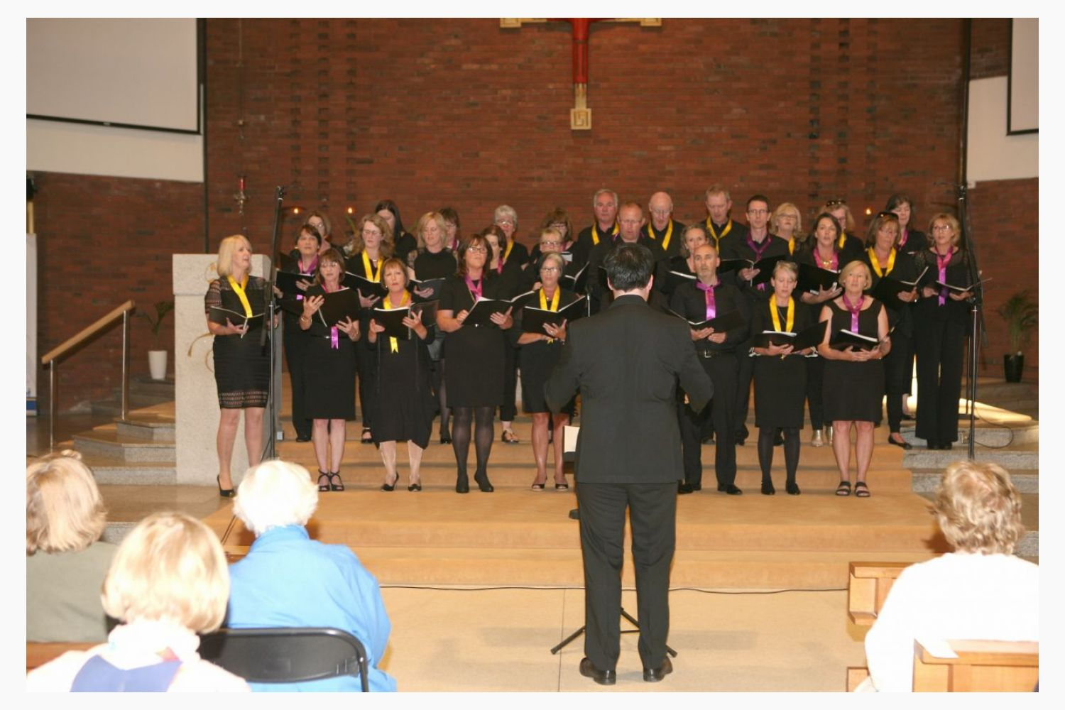 Photo's From The Walk While You Can Concert Featuring Kilmacud Crokes Choir Friday June 22nd