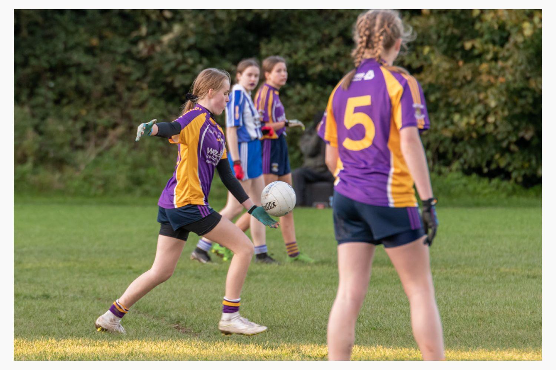 Kilmacud Crokes Under 13 Ladies Football Cup Final versus Ballyboden