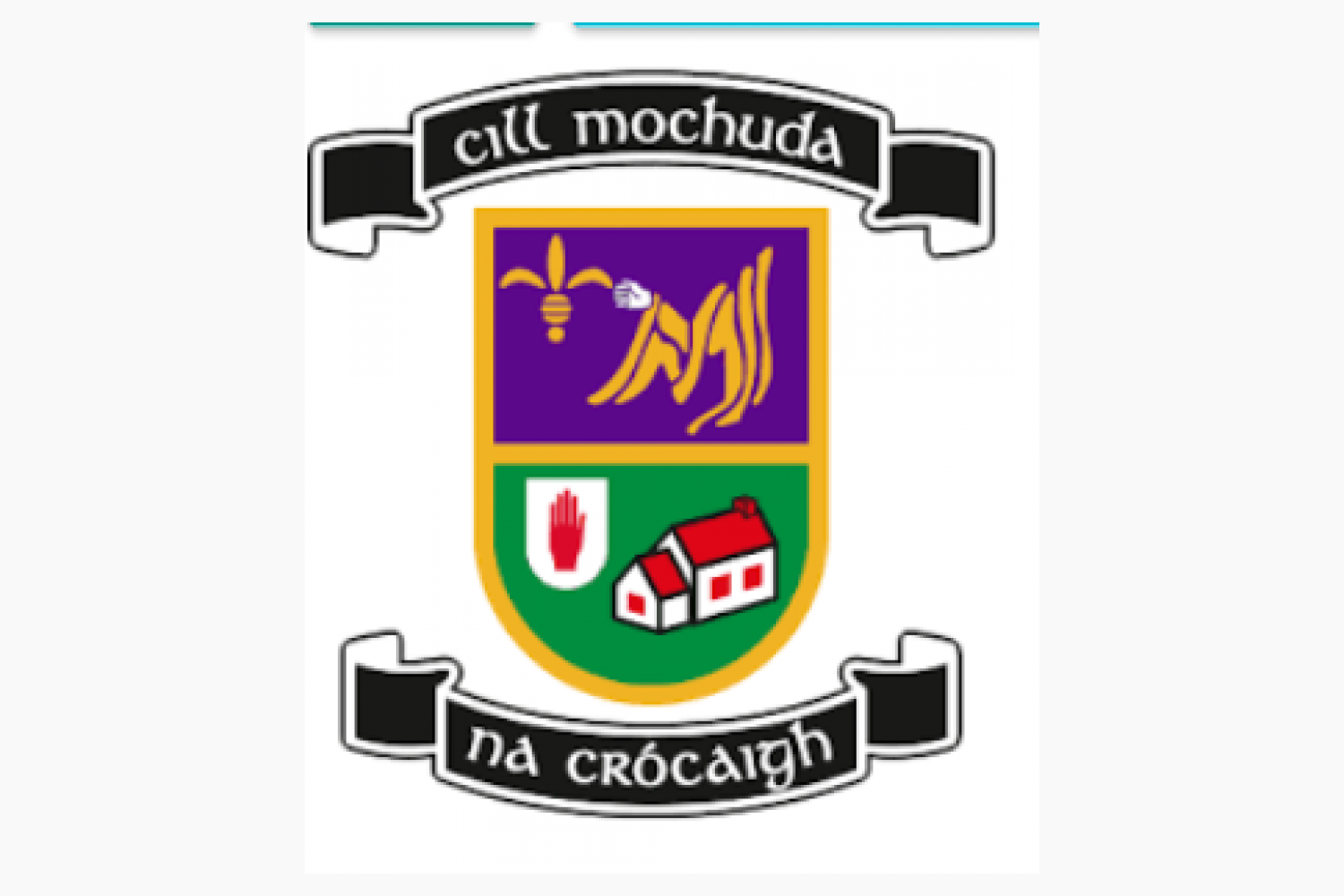 Ladies Junior Footballers Wish Their Senior Colleagues All the Best in This saturday's County Final Against Fox Cab