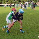 Kilmacud Crokes Hurling Blitz Oct 2013 (53)_W