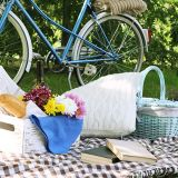 Its Picnic Time...Help Us Celebrate 20 Years