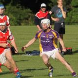 Crokes take the points in MHL1 v Cuala