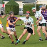 Minor Hurlers suffer defeat against Lucan in championship