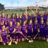 Crokes Camogie Under 14s continue their winning streak with Camogie County Championship