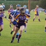 Senior 1 Camogie Team finish out league