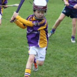Hurling - Mini All Irelands - Teams and Schedule