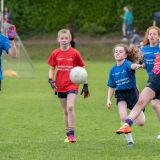 Camogie and LF Mini All Ireland Finals
