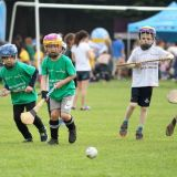 Hurling Mini All Ireland Finals