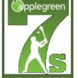 AppleGreen Hurling Sevens Saturday Sept 2nd
