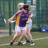Photos from AHL match against Erin Go Bragh