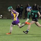 Ladies lose out to Lucan in Championship Final
