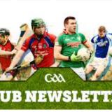 GAA Club Newsletter November 2017