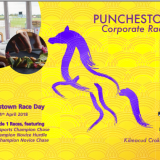 Punchestown 2018 Corporate Raceday