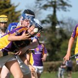Hurling Féile Photos