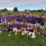 Kilmacud Crokes Under 10 Hurlers on Tour