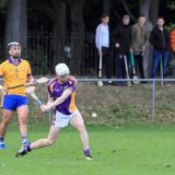 Senior B Hurlers reach Semi Final of the Championship