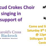 Kilmacud Crokes choir is performing in Stillorgan Shopping Centre on Saturday 8th December 2018 between 12-1pm