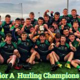 Big Crokes Involvement in great win for St.Benildus College - Dublin Senior A Hurling