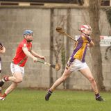 Winning start for AHL4 Hurling Team