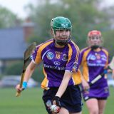 Good win for Senior Camogoie team against Raheny