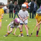 Photo's from the Camogie / Ladies Football BOI Mini all Irelands