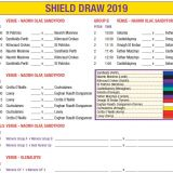 Shield Draw  -  Beacon Hospital All Ireland Sevens