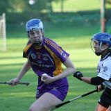 Senior Camogie Team into Championship Final