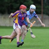 Junior B Hurling Challenge Matc