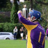 Senior B 1st Round  Club Hurling Championship Kilmacud Crokes Versus Ballyboden  Saturday July 18th