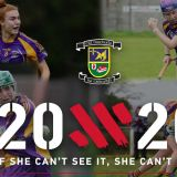 Crokes Beyond 20x20   - If She Can't See It, She Can't be  it