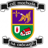 Kilmacud Crokes Beyond 20x20 - If She Can't See It, She Can't be it  - We Need Your Input