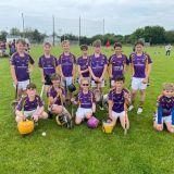 Under 11 Boys Hurling Away Trip  Clarinbridge
