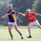 Tough start  to Championship for Junior B hurlers