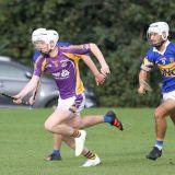 U16 A's beat Castleknock in Championship