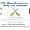 Hurling School Of Excellence