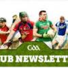 GAA Newsletter November 2018