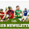 GAA NewsLetter May 2019